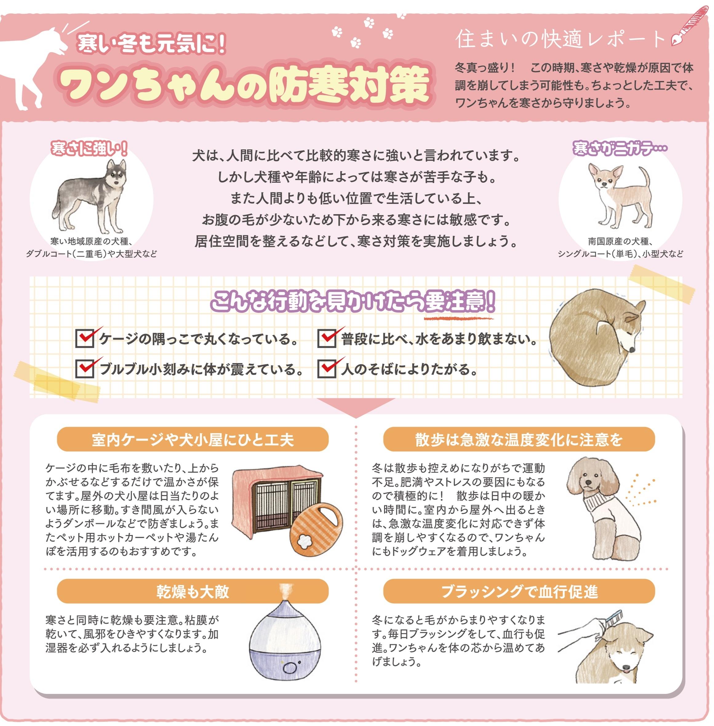 ワンちゃんの防寒.jpg